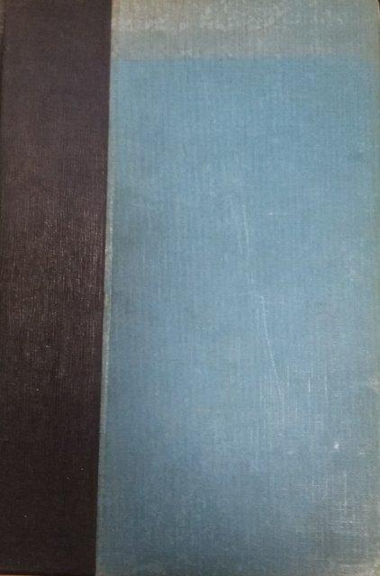 Жук В.Н. Мать и Дитя. Гигиена в общедоступном изложении. - Нью-Йорк; Берлин: изд-во Плат и Минкус, 1924.